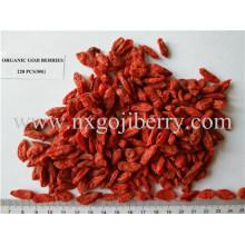 Sin pesticidas Goji Berry (Orgánico)