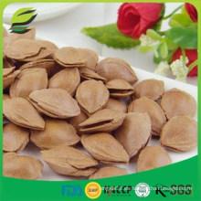 Nueces de albaricoque crudas y semillas de albaricoque con cáscara