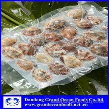 vacuum clams