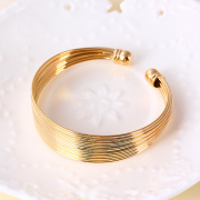 Fashion Jewelry Elegant Bracelet Bangle (50571)