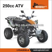 ATV Quad 250ccm mit der EWG, Off-Road
