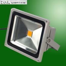 Lumière extérieure de LED 50W (220V / 110V / 12V / 24V)