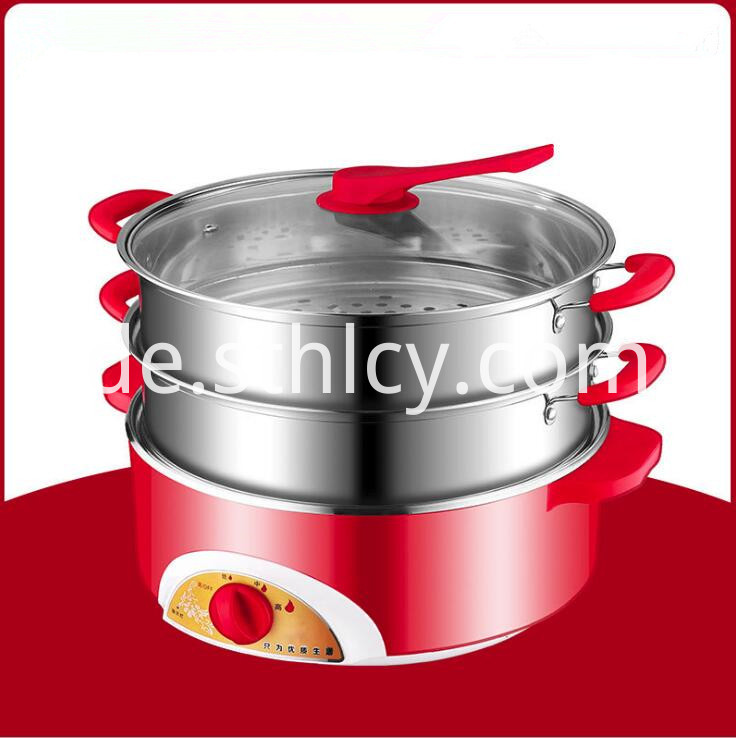 Electric Stainless Steel Cooking Pot