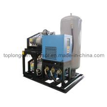 Botella de aceite sin aceite que sopla la bomba de aire del compresor de aire (Ww-0.55 / 35)