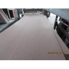 Melamine faced plywood / Raw plywood with cheap price