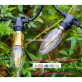 Cabo de extensão de 21 lâmpadas à prova de intempéries 48Ft UE UK Plug LED globo decorativo ao ar livre luzes de corda SLT-160