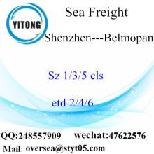 Consolidation du port de Shenzhen LCL à Belmopan