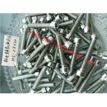DIN912/DIN7984 Hex Socket Cap Bolt Screw Machine Screw Torx Screw