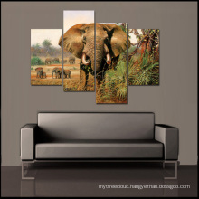 African Animal Decor