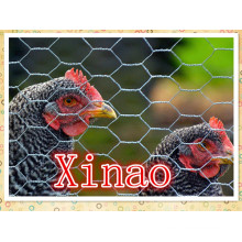 Hexagonal Wire Netting for Farm Fence/Chicken Wire /Rabbit Wire Mesh