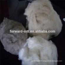 Top qualité en vente avec le meilleur prix pure fibre de cachemire