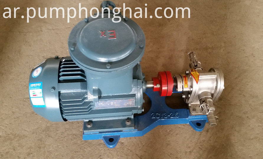gear lube oil transfer pump 4