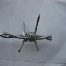 Hot-DIP Galvanized Stainless Barbed Wire