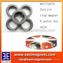 8 pólos propriedades magnéticas do ímã de ferrite anisotrópico magnetizado radial multipolar