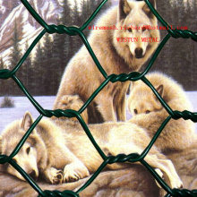 Zool Animal Protection Hexagonal Wire Mesh