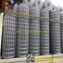 High Quality Hot-Dipped Galvanized Welded Wire Mesh