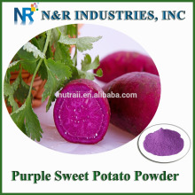 Chinese Purple Sweet Potato Powder 80mesh 200mesh