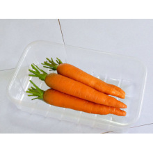 China Hersteller Walmart Obst Verpackung Verwendung PP & Pet Kunststoff Obst Aufbewahrungsbox
