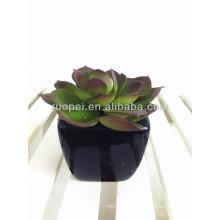 2016 mini planta suculenta en maceta artificial barata para la decoración casera