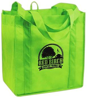 reusable shopping bagn
