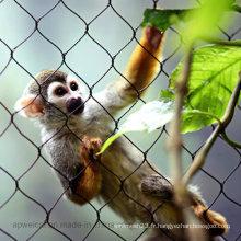 Clôture de singe enchevêtrée de singe