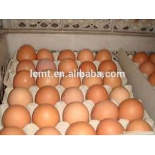 Завод прямых продаж бумажной массы 30 яиц лоток