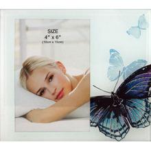 Красивая бабочка стекло фото рамка