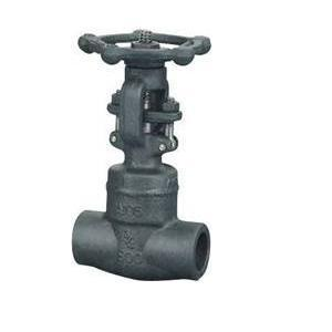 Screwed Berakhir Gate Valve