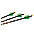"EXCALIBUR - DIABLO 18 ""ILLUMINATED CARBON ARROW 3PK"