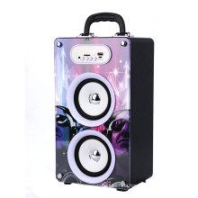 HI FI active amplifier speaker system /Manual Portable Speaker