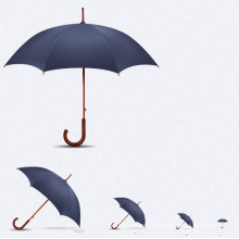 Auto Open Wood Handle Straight Umbrella (BD-34)