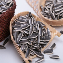 new crop Chinese company Inner mongolia sunflower seeds 601 market cheap price