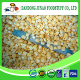 frozen cultivated sweet corn bulk corn