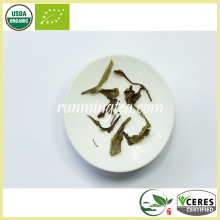 Thé blanc biologique Pai Mu Dan