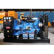 Generador de energía del motor diesel del uso casero portátil 80kw