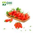 Goji Berry Extract Polysacharides Powdert
