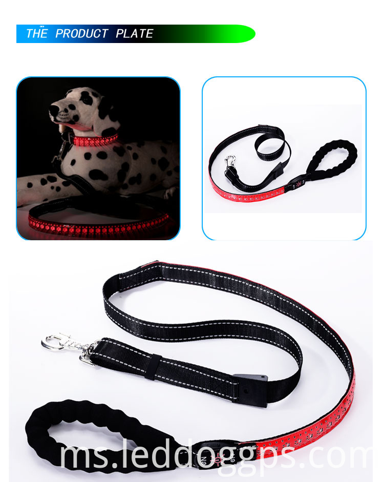 Glowing Dog Leash