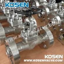 Válvulas de globo con extremos bridados de acero inoxidable forjado