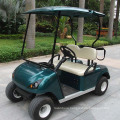 Ce Approved 2 Seater Modern Golf Cart (DG-C2)