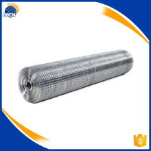 hot selling galvanized wire mesh rolls