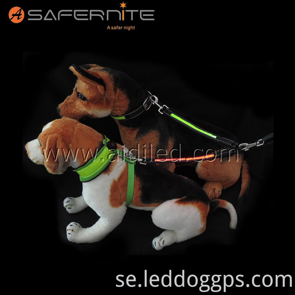 Led Safety Dog Lead
