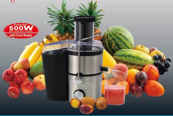 juice extractor stainless steel small