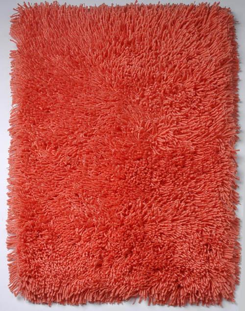Shaggy Doormat Indoor