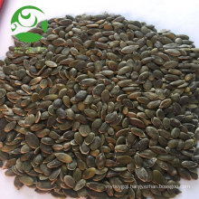 China wholesale certificates FDA pumpkin seed
