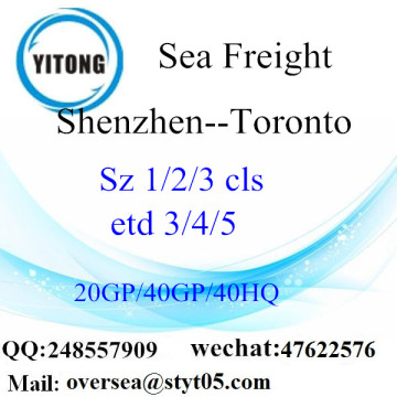 Shenzhen Port Sea Freight Shipping ke Toronto