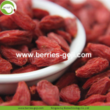 Fábrica Atacado Super Food Nutrition Malásia Goji Berry