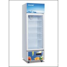 Réfrigérateur à affichage vertical à une porte
