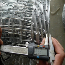 Hot Dipped Galvanized Field Wire Fäktning