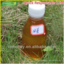 Natürlicher Ölsaatenraps (OSR) Honig