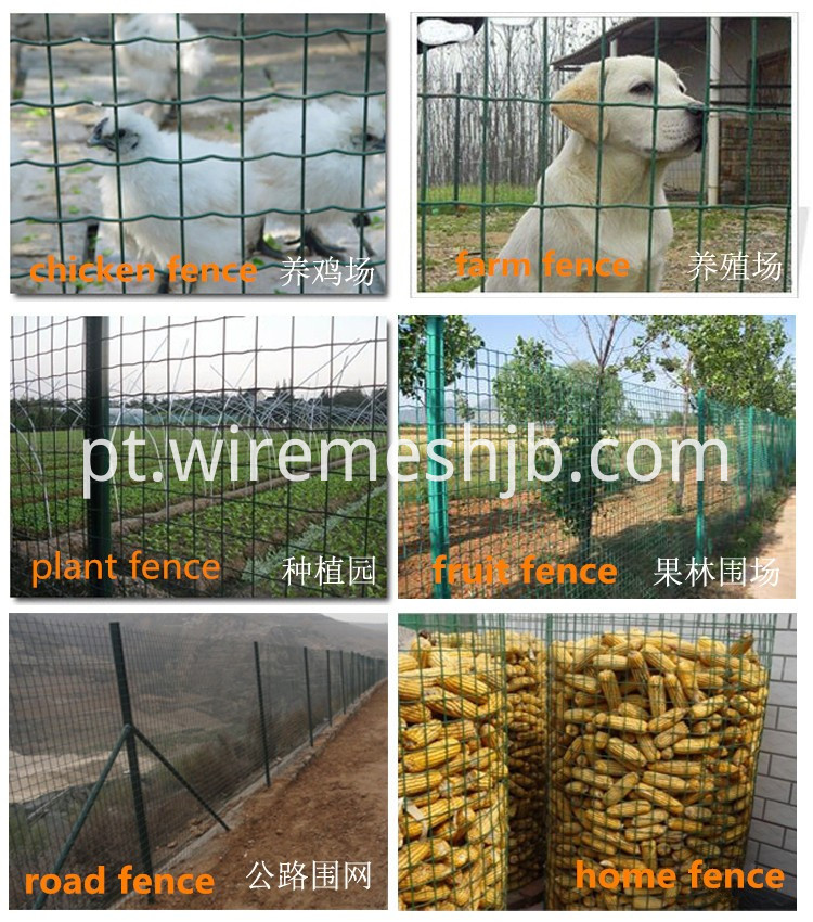 Holland Welded Wire Mesh Application